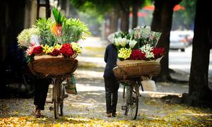 Hà Nội, Đà Nẵng vào top 10 điểm đến hấp dẫn châu Á