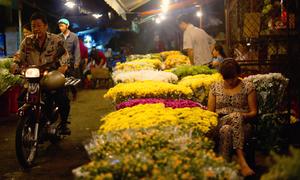 Chợ hoa đêm không ngủ ở Sài Gòn
