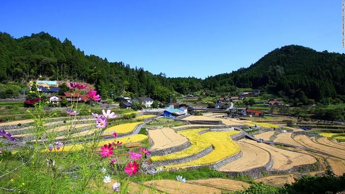 <p> Không chỉ sở hữu hàng trăm thửa ruộng bậc thang tuyệt đẹp, thị trấn Ini Tanada ở Hiroshima còn nổi tiếng bởi những hạt gạo thơm ngon. Nơi đây còn thường xuyên tổ chức các sự kiện liên quan đến trồng lúa, thu hút rất đông du khách.</p>