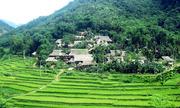 Kinh nghiệm phượt ngắm lúa Pù Luông và tắm thác xứ Thanh