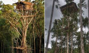 Nơi người dân cả đời sống trên cây vì sợ ma