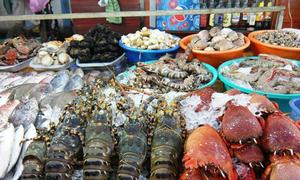 Những quán ăn ngon ở Phan Thiết