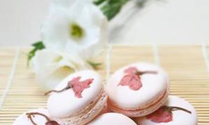 Những món ăn độc đáo từ cánh hoa anh đào ở Nhật Bản