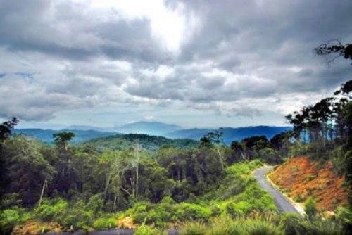 5-diem-trekking-mien-trung-tay-nguyen-dau-xuan-3