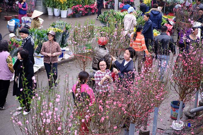 """<p class=""""Normal""""> Chợ hoa Quảng Bá ngày cuối năm ngập tràn trong sắc hoa với những cành đào thắm hồng, chậu lan, bó ly nhiều màu sắc. Ai cũng hồ hởi tìm mua cho gia đình một cây hoa để trang trí nhà cửa.</p>"""
