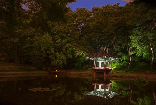 tour-tham-quan-cung-dien-han-quoc-vao-ban-dem-4