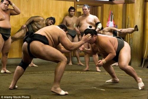 luu-y-khi-tham-quan-lo-luyen-sumo-o-nhat-ban