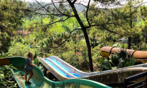 Công viên bỏ hoang ở Huế nổi tiếng nhờ lên báo nước ngoài