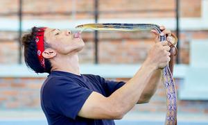 Nghệ sĩ Thái Lan hôn môi, vuốt ve rắn độc tại Nha Trang
