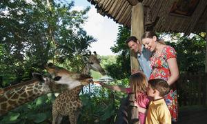 5 sở thú ở Singapore khiến trẻ em thích mê