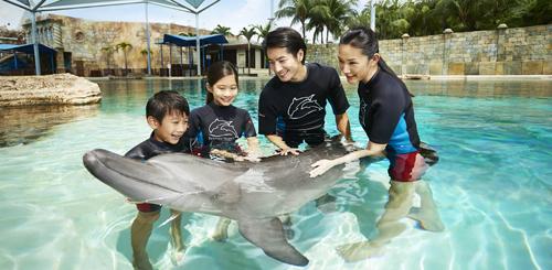 Địa chỉ: Dolphin Island, 8 Sentosa Gateway, Sentosa.
