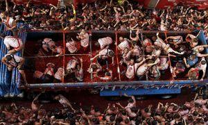 Lễ hội giẫm đạp 160 tấn cà chua ở Tây Ban Nha