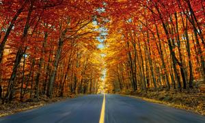 Điểm ngắm mùa thu đẹp nhất thế giới
