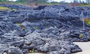 Lời nguyền khiến du khách khiếp sợ ở Hawaii