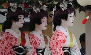 12 điều thú vị về nàng Geisha Nhật Bản