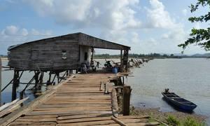 Thực hư cây cầu gỗ dài nhất Việt Nam bị 'xóa sổ' sau lũ