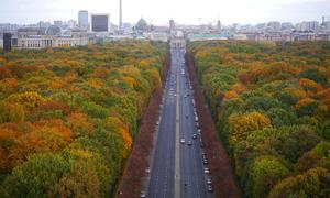 Mùa thu Berlin đẹp như tranh trong mắt người Việt
