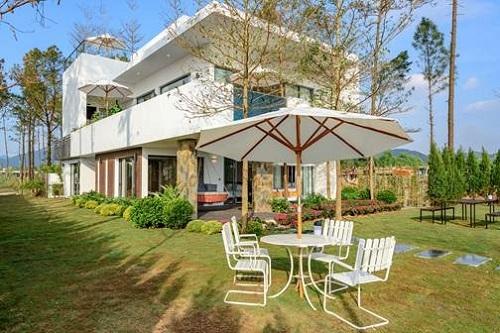 don-tet-co-truyen-ba-mien-tai-flamingo-dai-lai-resort-2
