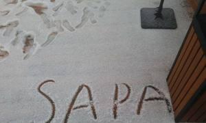 Ngỡ Sa Pa có tuyết, du khách đứng ngồi không yên