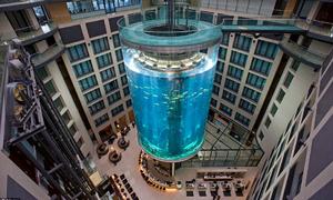Thang máy trong bể thủy sinh khổng lồ ở Đức