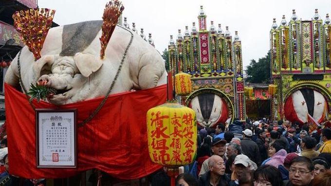 Lễ hội giết lợn thần tàn ác ở Đài Loan