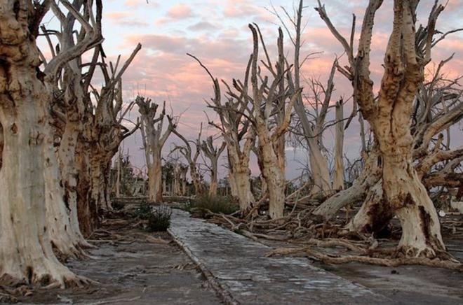 Thị trấn du lịch chết chóc 25 năm chìm trong biển nước