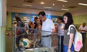 Khách Tây bật khóc khi tham quan bảo tàng ở TP HCM