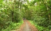 Cung đường trekking xuyên rừng ở Cát Bà
