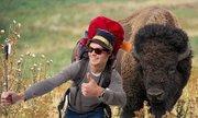 Điều điên rồ du khách làm ở vườn quốc gia Mỹ