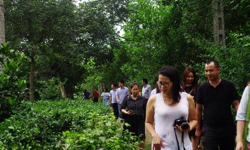 Trang trại cho bé làm nông dân ngay sát Hà Nội