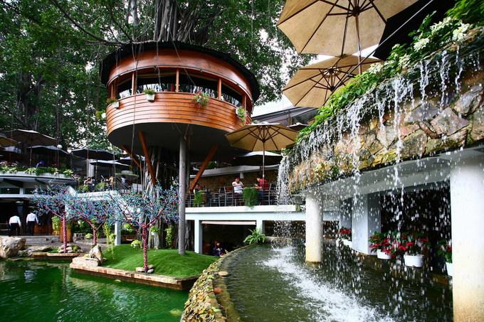 Quán cà phê dưới những tán cây cổ thụ ở Sài Gòn