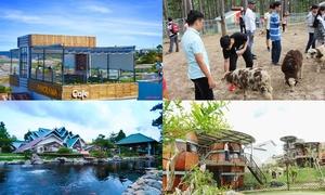 5 điểm đến mới nổi ở Đà Lạt được nhiều du khách check in