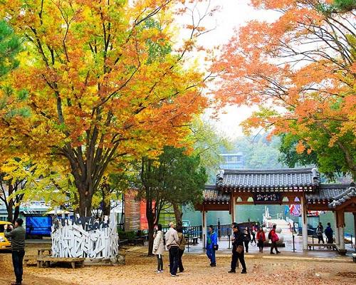 tour-han-quoc-dai-loan-chi-tu-12-9-trieu-dong-1