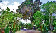 Du khách ngất khi vào công viên siêu thực mới của Disney