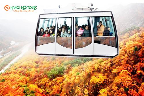 tour-seoul-dao-jeju-sau-ngay-gia-14-9-trieu-dong