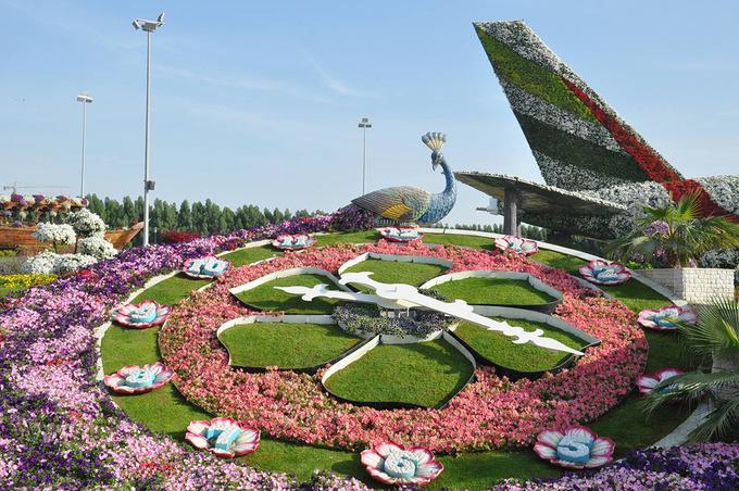 Vườn hoa lớn nhất thế giới trong lòng sa mạc
