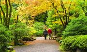 Tour 'du lịch chậm' dành cho người cao tuổi