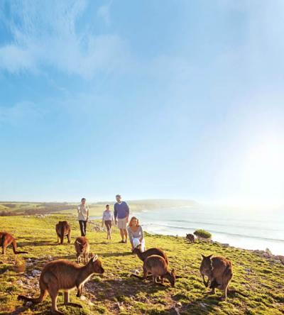 melbourne-va-gold-coast-diem-den-cho-mua-cuoi-nam-o-australia-9