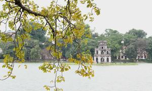 Mùa thu trên khu phố đi bộ Hà Nội lên báo nước ngoài