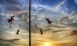 Điệu nhảy trên không 600 năm của người Mexico