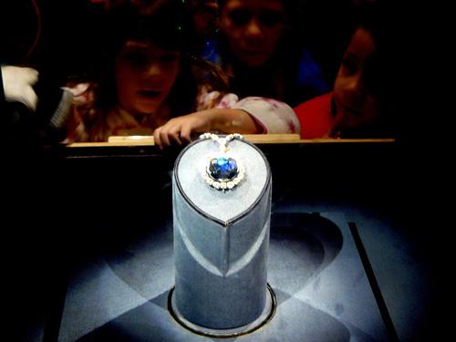 Nơi trưng bày Hope được nhiều du khách dừng chân ngắm nhìn lâu nhất khi tới bảo tàng. Ảnh: Wiki.