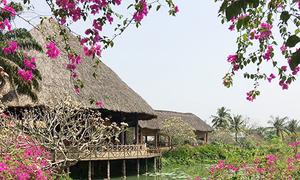 5 điểm vui chơi Tết Dương lịch trong ngày ở Sài Gòn