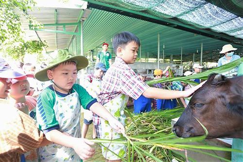 Green NoenNông trại này nằm ở Củ Chi, cách trung tâm thành phố khoảng 60 km, được xây dựng theo mô hình ở Hàn Quốc và Nhật Bản. Du khách đến đây có thể tham quan các khu trồng nấm, rau... và trực tiếp thu hoạch như những nông dân thực thụ. Ngoài ra nông trại còn có các khu nuôi dê, cừu, bò sữa. Bạn cũng được thưởng thức nhiều món dân dã được nuôi trồng ngay tại đây. Trò giải trí câu cá trong các nhà chòi, bơi lội cũng được nhiều khách yêu thích khi tận hưởng kỳ nghỉ trong không gian xanh mát này. Vé tham quan là 50.000 đồng. Tại đây cũng có tour trọn gói gồm đưa đón giá 270.000 đồng/người.Địa chỉ: Nguyễn Thị Rành, xã An Nhơn, huyện Củ Chi.