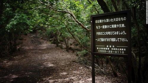 RừngAokigahara là nơi nhiều người tại Nhật tìm đến trong những giây phút cuối đời, cảnh sát đã phải đặt biển báo đề dòng chữ: Cuộc sống này là món quà quý giá cha mẹ dành tặng bạn, kèm đường dây nóng hỗ trợ.Ảnh:Nicholas Datiche.