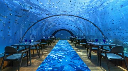 Resort có dịch vụ nhà hàng trong lồng kính này nằm ở  độ sâu 5,8 mét dưới mặt biển với khu nhà hàng có thể tích lên đến 400 m3  cùng diện tích vận hành 90 m2.