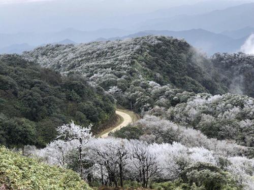 Nhiệt độ xuống thấp khiến hiện tượng băng giá xuất hiện ở đỉnh Phia Oắc, huyện Nguyên Bình, tỉnh Cao Bằng từ đêm 8/1. Đây là đỉnh núi cao nhất của tỉnh, 1.900 m, thuộc Công viên địa chất Cao Bằng.