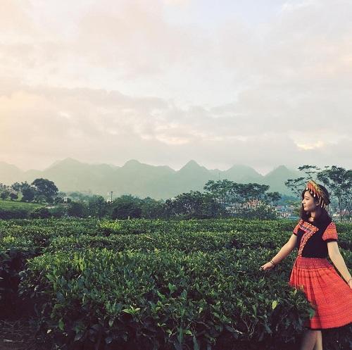 Thị trấn Mộc Châu là một nơisầm uất hơn với nhiều món ăn ngon. Khám phá Mộc Châu, du kháchcó thể men theo những con đường nhỏ vào trong các xã, trên đường đi ngẫu nhiên sẽ thấy nhiều cánh rừng mận tươi đẹp vô cùng. Mộc Châu còn có những đồi chè xanh mướt, là một nét đẹp riêng ít đâu có được.