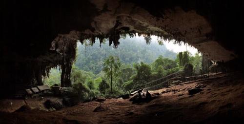 Khám phá Miri và Kuching, hai vùng đất xa xôi Đông Malaysia - 11