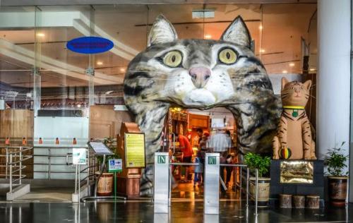 Không thể không kể đến bảo tàng mèo với đủ thứ hiện vật liên quan đến mèo từ cổ chí kim được trưng bày.