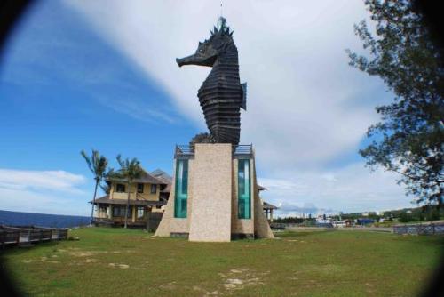 Cá ngựa là biểu tượng của Miri. Du lịch biển cũng khá phát triển, với các dịch vụ lặn ngắm san hô được ưa chuộng.